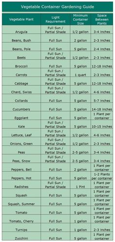 Growing Vegetables In Containers ... You never know when you'll need this chart on how to plant. #Vegetablegardenbasics