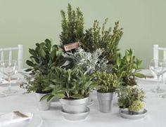 Centrotavola con erbe aromatiche