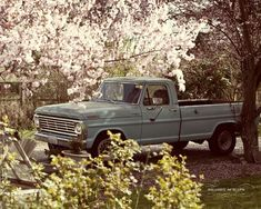 you cant tell me a truck doesn't look good like this. especially an old ford.