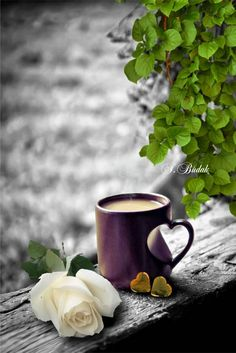 ~Time for Coffee~