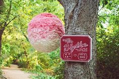 Gender Reveal Party Piñata And