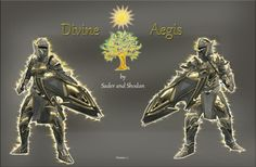 Divine Aegis - Paladin Style