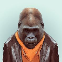 GORILLA by Yago Partal  for ZOO PORTRAITS