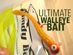 In this how to video we go over the ultimate bait for vertical jigging walleyes. This video will teach you how to properly rig a plastic worm and we also go . Fly Fishing Tips, Fishing Rigs, Walleye Fishing, Walleye Jigs, Walleye Bait, Plastic Worms, Spring, Fun, Fishing Tackle