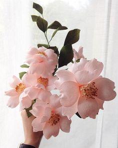 Paper Camellia - version 3.0 #papetal #camellia