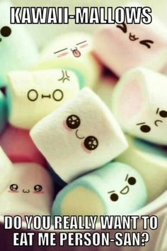 ım sorry dear kawaii mellows, ı will now do the thing every person would have done. *puts all of them in mouth*
