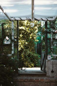 Sommerhochzeit in der Alten Gärtnerei Fine Art Photography, Studios, Flora, Summer, Plants, Artistic Photography, Art Photography