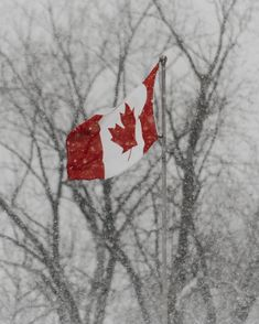 Photo by Brent Gorwin on Unsplash Hd Photos, Flag, Canada, Toronto, Science