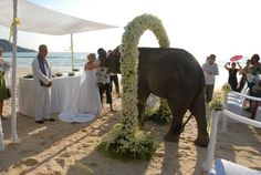 A Tropical wedding in Phuket, Phi Phi Island, Thailand..