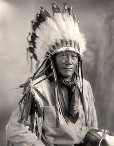 american indians pictures - Bing Images   Indians: Porcupine. It was created between 1905 and 1945 by Harris & Ewing.