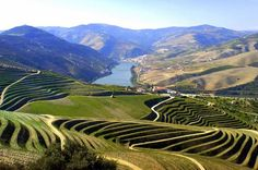 Now we are in the Douro Valley, famous for the vineyards and wine, expecially Porto. I'm feeling at home 'cause I live in a similar valley in Italy (Piedmont)