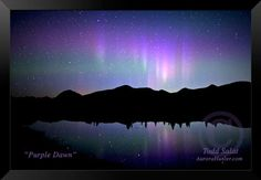 Purple Dawn, aurora borealis photo from Alaska