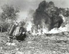 US Marines - war in pacific: M2 Flamethrower on Peleliu