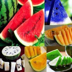 10-PCS-WATERMELON-Seeds-Heirloom-heirloom-NON-GM-UNUSUAL-RARE-Delicious-Fruit Organic Vegetable Seeds, Delicious Fruit, Watermelon, Vegetables, Gardening, Food, Ideas, Watermelon Fruit, Backyard Farming