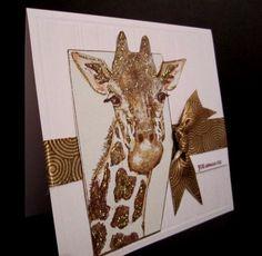 Giraffe  So cute.
