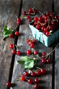 Gorgeous photo for colourful inspiration!  [152/365] sour cherries by hannah * honey & jam, via Flickr
