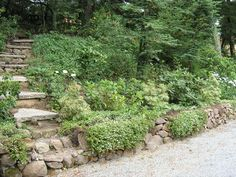 hillside landscaping   Stone Stairway and Wall