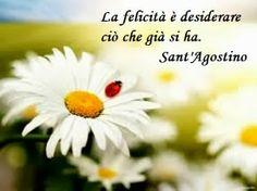 Flavio Insinna Il Conducente: La felicità...