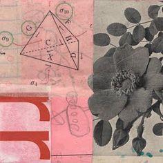 Randel Plowman, a collage a day