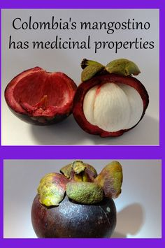 Mangostino is Another of Colombia's Over 150 Fruits