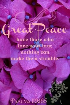 Psalm 119:165  (NIV)  Great peace have those who love your law,  and nothing can make them stumble.