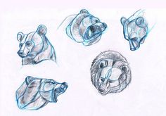 bears_by_sofmer-d4z7l9q.jpg (1718×1205)
