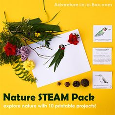 Explore nature with 10 printable STEAM projects for chiildren! They will learn about nature while playing games, completing engineering challenges, going on scavenger hunts, and making art with natural materials. Skeleton For Kids, Maths In Nature, Diy Fairy Door, Mason Jar Lanterns, Shapes For Kids, Printable Designs, Free Printables, Printable Crafts, Book Crafts