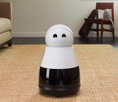 rogeriodemetrio.com: Kuri Robot