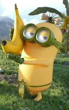 √ Images of Minions Funny, Cool, and Minion Pictures Complete Humor Minion, Despicable Me 2 Minions, Minions Love, Minion Stuff, Purple Minions, Evil Minions, Funny Minion, Minions Funny Images, Minion Pictures