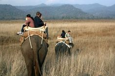 Exploring the Attractions of Corbett National Park