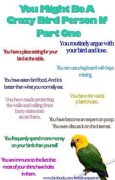 Crazy Bird Person 1.