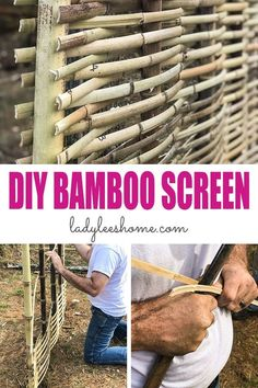 Lawn and Garden Tools Basics Diy Bamboo Screening. We should Learn About Bamboo It's An Amazing Plant That Can Be Used For Fencing And Screening. Figure out How To Build A Bamboo Screen Or A Bamboo Fence. Diy Bamboo, Bamboo Trellis, Bamboo Crafts, Bamboo Fence, Bamboo Ideas, Wattle Fence, Bamboo Structure, Building A Fence, Bamboo Building