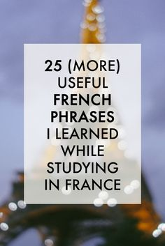 "My first post titled ""The 25 Most Useful French Phrases I Learned While Studying in France"" got a ton a great feedback, so I thought I'd make a part deux. And here it is . These are 25 more French phrases I encountered rather often during my study abroad in Lyon, France. Enjoy! 1. de toute façon  [də tut fa.sɔ̃]  anyway Use this just the way you would ""anyway"" in English. De toute façon…je disais… (Anyway…I was saying…) 2. Je me demandais…  [ʒə mə də.mɑ̃.de]  I was wondering... You…"