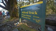 Te Anau or Queenstown - Milford Track Encounter TA - Ultimate Hikes