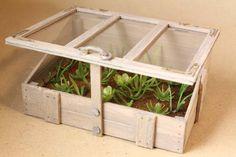 Iivarin tekemä kasvulaatikko on todella hyvä. Siiri on istuttanut laatikkoon sellaisia kasveja, jotka hän oli koulinut jo keittiössä.   Th...