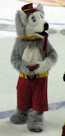 Calgary Flames Mascot - Harvey the Hound. 1st NHL mascot ever created.     Created by Street Characters Inc.