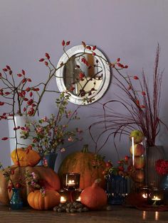 pumpkin vignette - lavender and orange