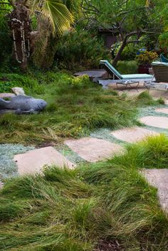 stone path through groundcovers and sedge meadow lawn substitute (Carex pansa)