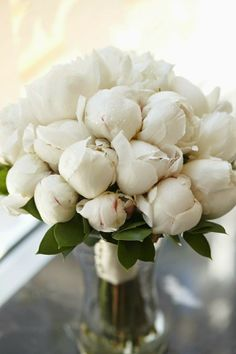 A Pure White Peony.... so reminds me of my grandmother's garden as a child. Growing up in the south.