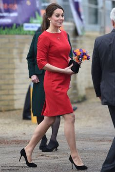 Duchess Kate: Kate Supports East Anglia's Children's Hospices Appeal in Norfolk