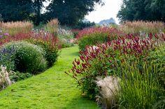 Garden Design, Plants, Cottage Garden, Water Wise Landscaping, Outdoor, Luxury Garden, Dream Garden, Rock Garden Landscaping, Trees To Plant