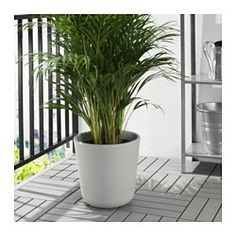 IKEA - ÖSTLIG, Plant pot, Decorate your home with plants combined with a plant pot to suit your style.