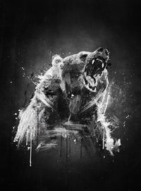 Bear tattoo inspiration