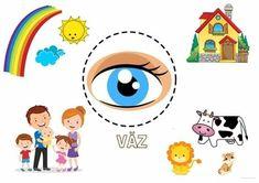 Senses Preschool, Body Preschool, Dinosaurs Preschool, Preschool Learning Activities, Preschool Worksheets, Kids Learning, Preschool Apple Theme, Kids Planner, Jungle Theme Birthday