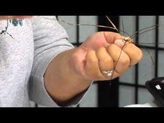 The Joy of Crafting 193/3 - Bird's Nest Ring