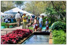 Art in the Park at WaterColor, Florida #southwalton #sowal #30a
