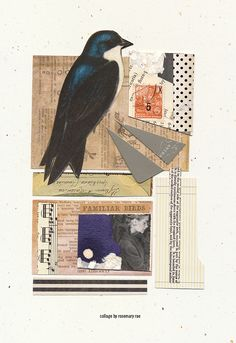 my day 300 collage (familiar birds)  #collage #paperart