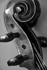 Gave up the violin at 5th grade and have since regretted it!