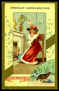 French Tradecard - The Quail