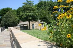 Black-Eyed Susans at the Riverview Park Visitor Center by Melissa @ Pittsburgh Parks Conservancy, via Flickr